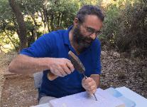 שלטי אבן ירושלמית